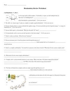 Worksheets Enzyme Activity Worksheet worksheets and activities on pinterest this 3 page worksheet has detailed questions which review the 4 types of macromolecules carbs