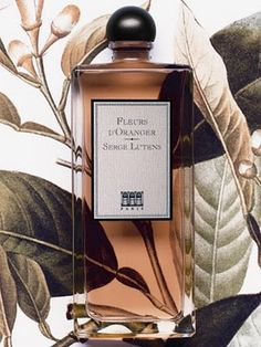 "Fleurs d'Oranger by Serge Lutens. The ""I am a goddess"" orange blossom."