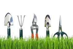 Whats The Garden Tools? - http://www.myhometricks.com/whats-the-garden-tools/ - #Gardening Regular care will ensure that your tools continue to perform efficiently. Maintaining Garden Tools Routine maintenance needs to be done only once a year if tools are handled with care, cleaned, and oiled if necessary, and repaired promptly and correctly. Regular care ensures that damage and...