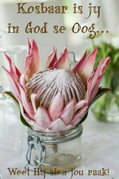 Points You Should Know Prior To Obtaining Bouquets South African Wedding: Pink Protea Floral Decor. Protea Art, Protea Flower, Protea Wedding, Wedding Flowers, Boho Wedding, Wedding Stuff, African Christmas, South African Weddings, Country Style Wedding