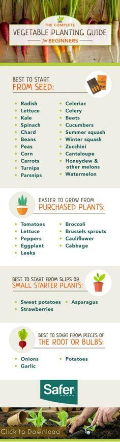 The Complete Vegetable Gardening Guide for Beginners [FREE] #apartmentgardeningforbeginners