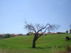 Boavista Golf - Lagos - Portugal