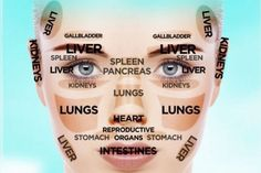 Reduce Wrinkles And Lift Up Saggy Facial Tissue Utilizing Face Reflexology Gymnastics - Acne Treatment Holistic Healing, Natural Healing, Chinese Face Reading, Health And Beauty, Health And Wellness, Les Chakras, Reading Charts, Face Mapping, Face Reveal
