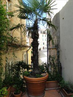 Übergang vom Palais zu großen Terrasse mit Blick auf den Kirchplatz und die Via del Popolo