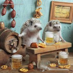 Oktoberfest - a favorite holiday hedgehogs!!! - null