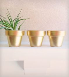 Gold Mini Planters By Redwood Stoneworks. Handpainted and perfect for a little succulent.