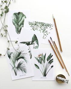 5 x Postcard Botanics ss17