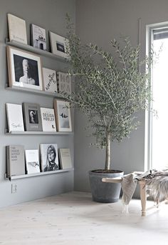 Grey book wall | Stylizimo blog | Bloglovin'...