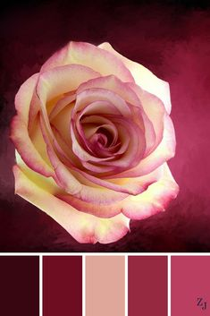 ZJ Colour Palette 605 #colourpalette #colourinspiration