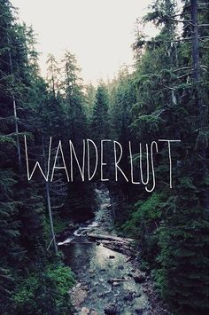 Travel Quotes | Wanderlove.