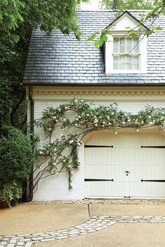 Trained rose trellis (and love the garage door).