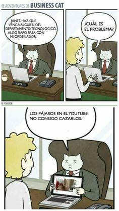 The Adventures of Business Cat #6 #gatos