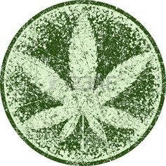 Cannabis or marijuana green vector leaf inscribed in a circle and the aged for your design, icon, illustration. photo