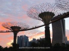Gardens by the Bay, Singapore  Find out what to do in Singapore on http://eatwelltravel.wordpress.com/2014/08/15/singapour-en-quelques-jours/