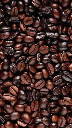 Coffee beans - is that not one of the most beautiful sights you've ever seen?!?