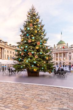 7 Amazing Christmas Trees in London - You Have to See These Now Christmas In Britain, Christmas In England, London Christmas, Christmas Travel, Christmas Things To Do, Christmas Time, Christmas Lockscreen, London Square, Beautiful Christmas Trees