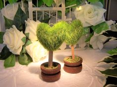 Green topiary place name holders with tiny wooden pots at the base Wedding Place Names, Wedding Place Settings, Wedding Name, Tree Wedding, Unique Wedding Favors, Unique Weddings, Manzanita Tree, Wedding Calligraphy, Topiary