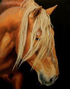 Belgian portrait, 8 X 10 pastel by Sarah Rose.