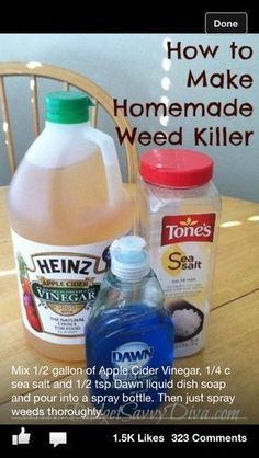 Garden Home made weed killer. It changes the soil ph and will kill just about everything. Weed Killer Homemade, How To Make Homemade, Gemüseanbau In Kübeln, Weed Spray, Garden Pests, Garden Fertilizers, Weed Control, Diy Cleaning Products, Cleaning Recipes