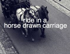 i already have but i want it to be more romantic and meaningful Stuff To Do, Things To Do, Girly Things, Romantic Bucket List, Relationship Bucket List, Horses, Adventure Bucket List, Summer Bucket Lists, Nyc Bucket List