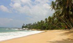 Die schönsten Strände in Sri Lanka - Meine Top 10 Traumstrände - WebundWelt