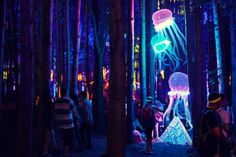 Elecric Forest festival | Sherwood Forest at Electric Forest, Rothbury, Mich.