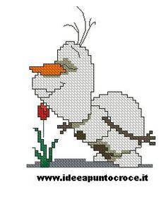 OLAF PUNTO CROCE