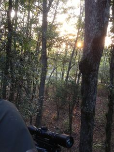 Listening to the woods wake up in Merriweather County, GA. What an absolute blessing!