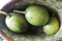 Avocado  in kinab'anan basket