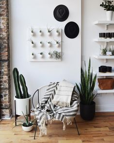 There's a new post on the blog about one of my favorite shops @gatherhomelifestyle! It's the most beautiful space with the most perfect plants. Also I'm looking to feature independent businesses and local makers on Sonder for the #guidedby project. Send in recommendations to hello@sonderjournal.co! by mandylancia