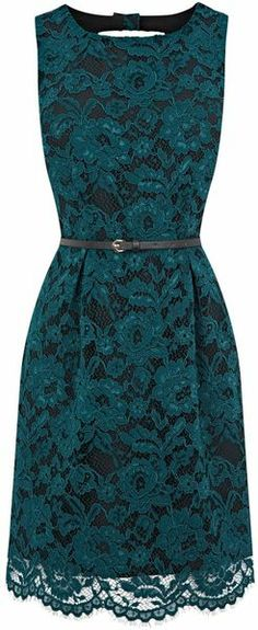 Oasis Lace Lily Lantern Dress in Teal Blue. Classy and so feminine!.