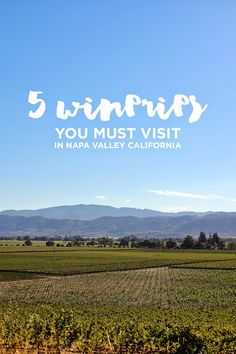 5 Wineries You Must Visit in Napa Valley California.
