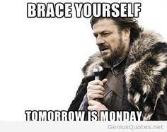 Brace yourself   meme