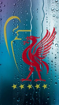 One of the greatest sporting events on earth is soccer, generally known as football in several countries around the world. Liverpool Logo, Liverpool Anfield, Liverpool Champions, Liverpool Football Club, Champions League, Liverpool Fc Wallpaper, Liverpool Wallpapers, Bicycle Wallpaper, Liverpool Tattoo