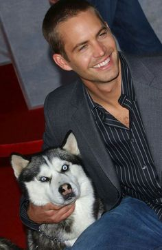 Paul Walker with a rather scary looking husky for the premiere of Eight Below.