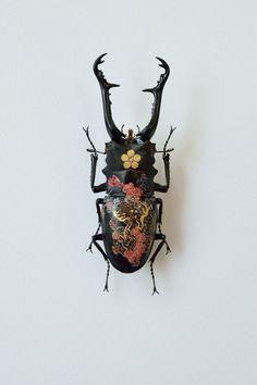 """steampunktendencies:  """" Oil on Beetle by Akihiro Higuchi  """""""