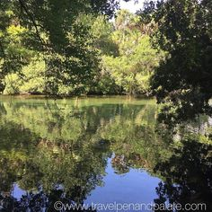Peaceful reflections in the still water of the Homosassa River #florida