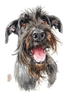Debra Jones   WATERCOLOR  Order an oil painting of your pet now at www.petsinportrait.com                                                                                                                                                                                 More