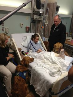 Comfort Dogs Help Provide Emotional Support In Boston After Marathon Bombing (PHOTOS)