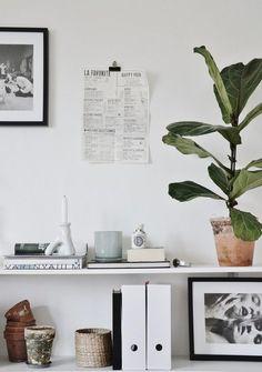 shelf styling //
