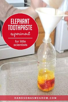 Simple science activity for preschoolers using supplies you already have at home.  Fun and exciting science experiment to make elephant toothpaste! Toddler Science Experiments, Preschool Science Activities, Easy Science, Hands On Activities, Science For Kids, Science Projects, Toddler Preschool, Preschool Activities, Science Ideas