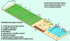 aquaponics THE S-2005 BUILD IT YOURSELF