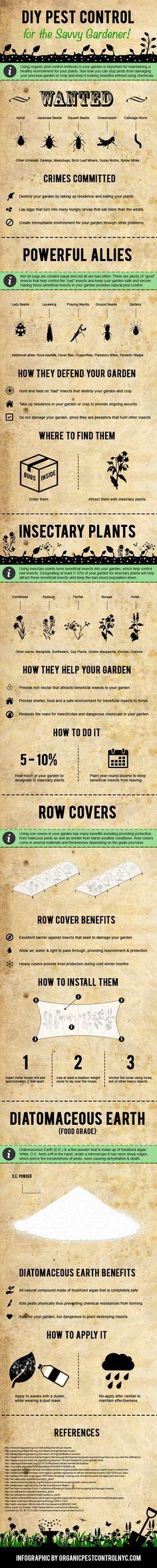 DIY Pest Control for the Savvy Gardener!