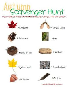 Nature Study with an Autumn Scavenger Hunt (and a free printable!)