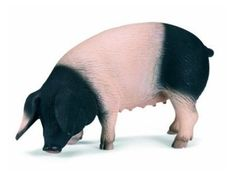 Schleich Pig: Swabian-Hall Pig
