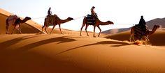 Não é à toa que muitas pessoas tem curiosidade em conhecer #Marrocos, um lugar cheio de história, mistério e beleza. Mas, muitas vezes, o receio de não conseguir se comunicar por lá - a maioria dos marroquinos falam árabe - os impede. Pensando nisso, incluímos um guia para te acompanhar e não deixar você perder um único momento sequer!  Embarque com a gente nessa: https://wefly.com.br/pacote/1121/costa-del-sol-e-marrocos-8-noites
