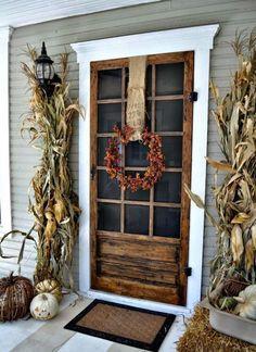 Gorgeous screen door!
