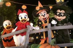 Mickey Mouse and Pals to Dress Their Best for 'Disney's Halloween' September Disneyland Halloween, Disney World Halloween, Mickey Halloween Party, Scary Halloween, Happy Halloween, Halloween Tips, Halloween Pictures, Walt Disney, Disney Fun