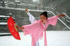 Wudang kung fu - Snow fan.