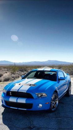 Ford Mustang Shelby GT 500. Freakin Love this body style